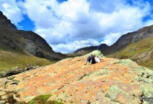 Visita ao Glaceir Pastoruri – Descançando na natureza