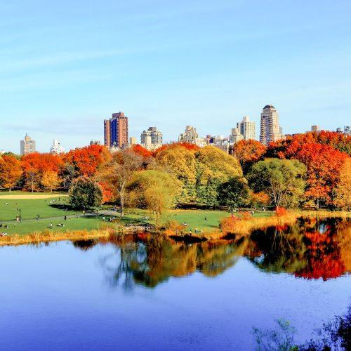 Nova York no outono - quando ir onde ficar e mais dicas