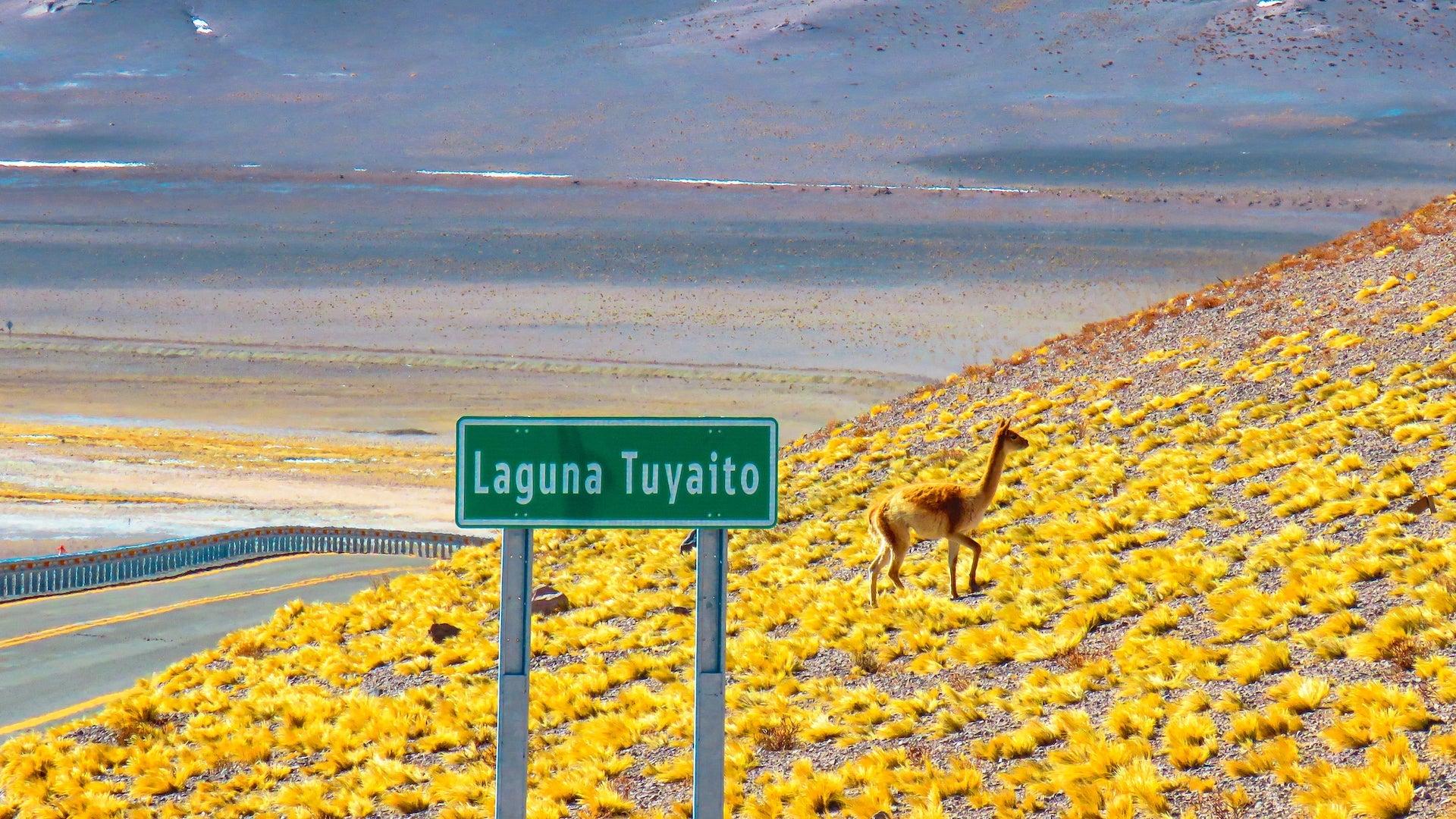 como chegar ao Deserto do Atacama - Santiago - Chile
